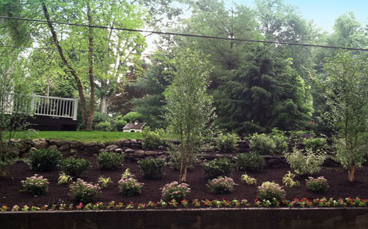 Two Brothers Landscaping Essex & Morris County